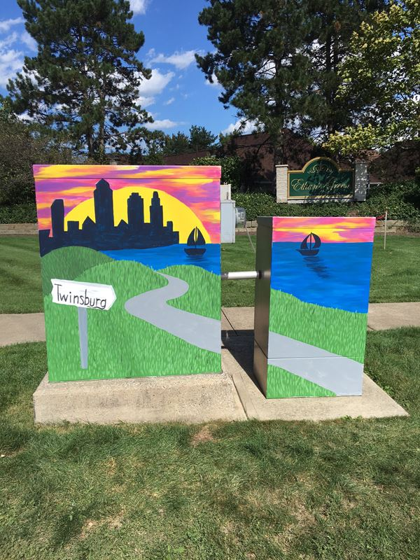 Electrical Box Art by Maryann