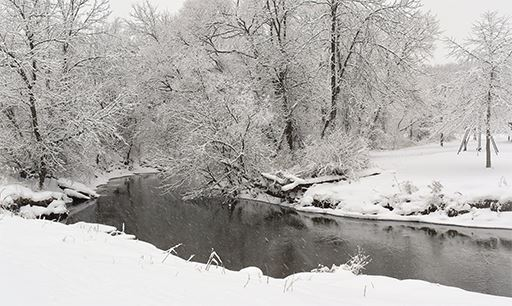 Snow Falls Over Tinker's Creek